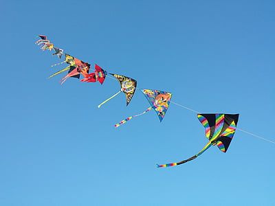 selective focus photograph of kite