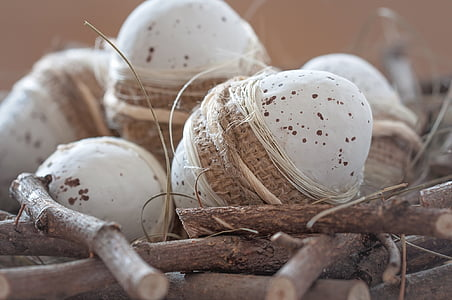selective focus photography of poultry eggs