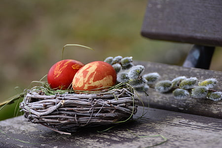 two red eggs on brown bird nest