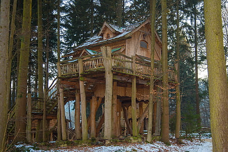 brown tree house surrounded by trees