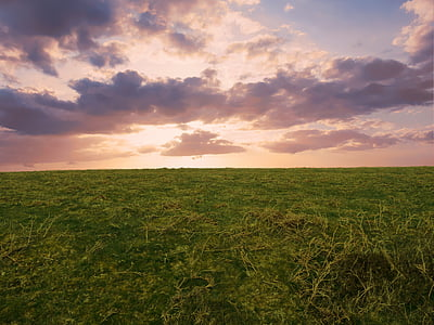 landscape photography of green grass field during day time