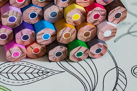 macro shot photography of coloring pencils