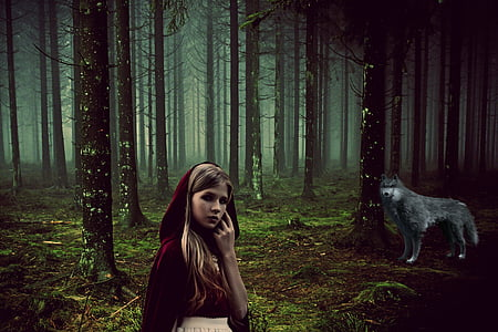 Little Red Riding Hood and gray wolf poster
