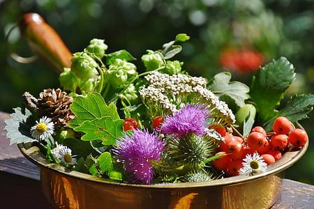 shallow focus photo of plant arrangement