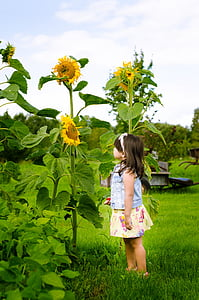 girl standing near sunflower plant during daytime