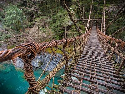 brown hanging bridge above body of water