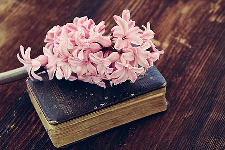 pink flowers on black book