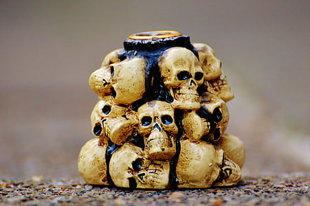 beige skulls on concrete floor