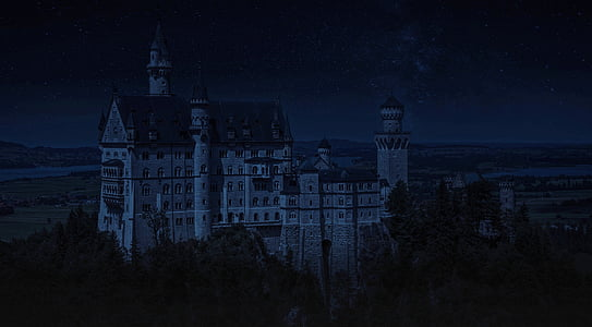 white and gray castle at night
