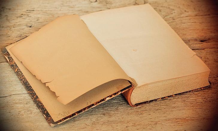 brown open book