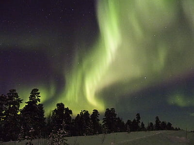 green aurora borealis over silhouette of trees