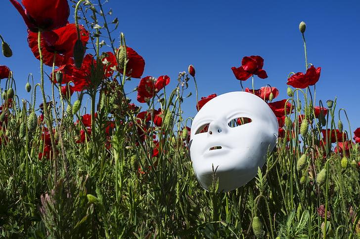 white mask on red poppy flower field
