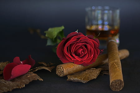 red rose on top of brown cigar