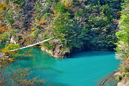 hanging bridge above lagon