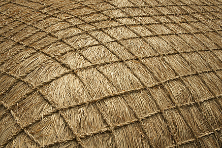 brown thatch roof with net