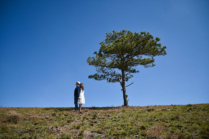man and woman standing side by side on field near tree
