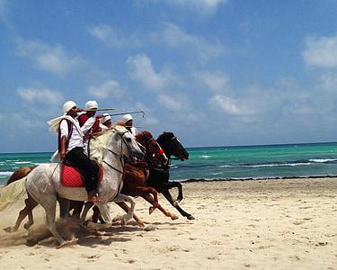 group of men riding horses beside seashore