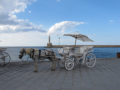 white horse carriage near ocean during daytime