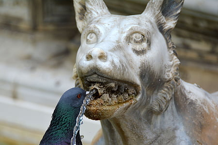 black pigeon beside white animal statuette
