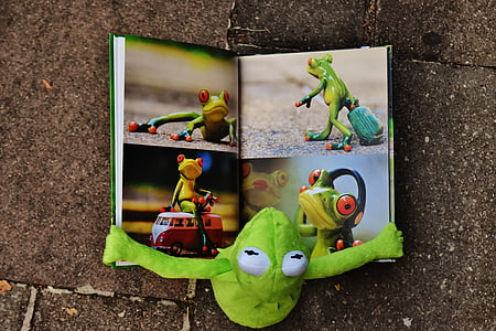 flat lay photography of frog plush toy reading book