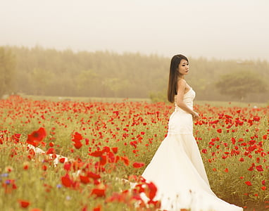 woman in white dress standing in the middle red flower field