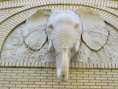 gray elephant head embossed wall