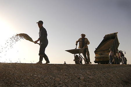 man pushing wheelbarrow