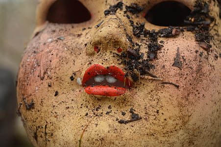 close up photography of doll with muds