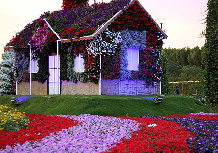 brown and white wooden house covered with assorted-color petaled flowers
