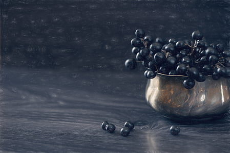 black berries on stainless steel bowl painting