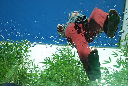 person on top of glass surface near leafed plants
