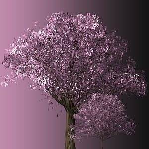 purple leaf tree in close-up photography