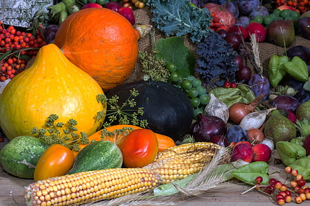 assorted gourds and vegetables