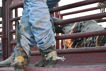 person wearing blue jeans and cowboy boots near animal cage