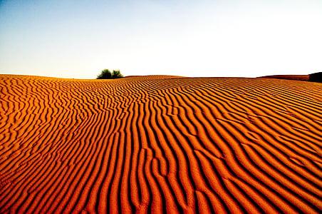 brown desert sands