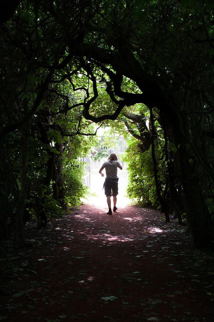 man walking through tree tunnel at daytime