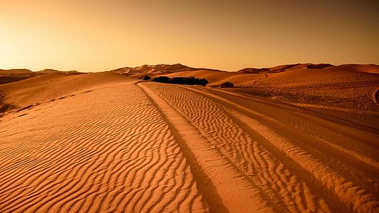 landscape photography of desert dunes