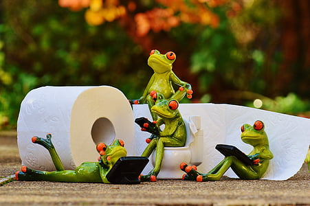 selective focus photography of several red eyed tree frog figurines beside white toilet paper roll