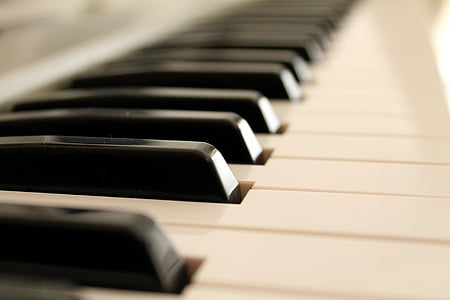 depth of field photography of keyboard