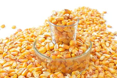 corn lot