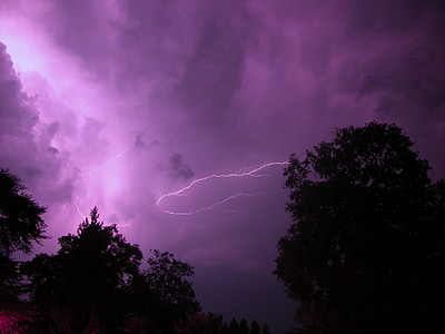 trees and lightning