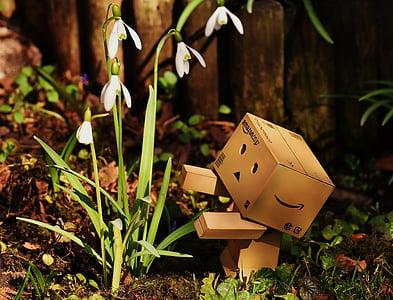 white snowdrop flowers beside brown Amazon cardboard robot