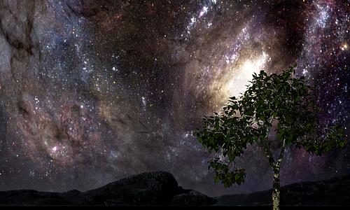 green leafed tree under galaxy sky