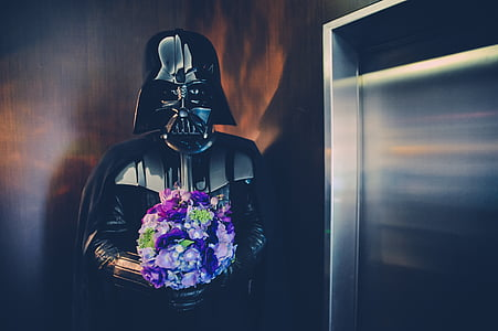 Darth Vader holding purple flower bouquet