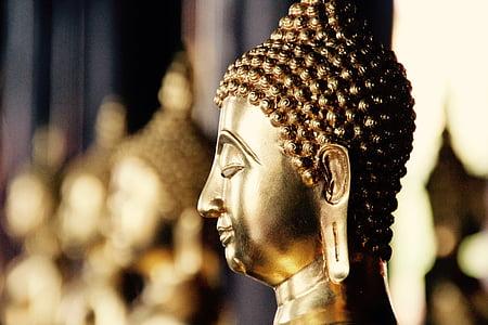 gold Mudra Buddha