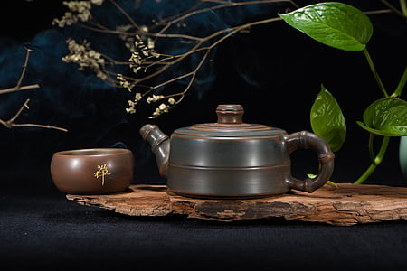 brown and black terracotta kettle on brown wooden slab bear green Ivy plant