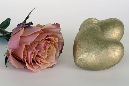 pink rose beside two gold heart decors