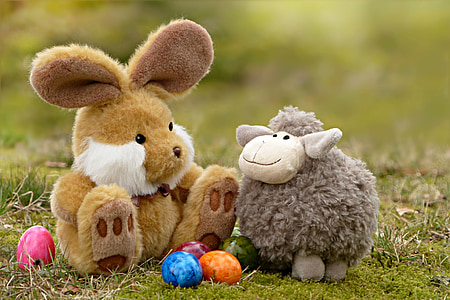 shallow focus photography of two assorted plush toys