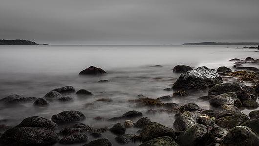 rocks with sea fog