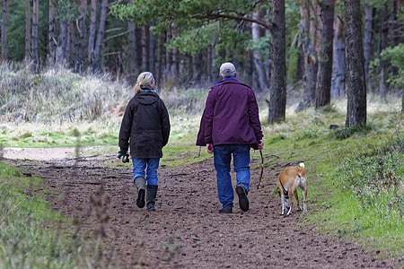 man and woman with bubble jacket walking on road with brown dog during daytime